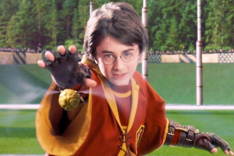 harry-potter-seeker-quidditch